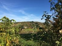 Herbstlandschaft bei Marz