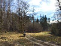 Bock-Chef wie immer offroad im Wald