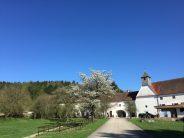 Schloss Kreisbach