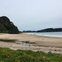 Hot Water Beach bei Hahei, Coromandel