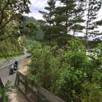 Am Weg zum Lake Taupo