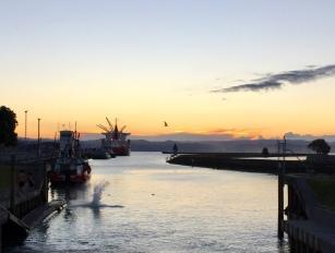 Abendstimmung am Hafen in Gisborn