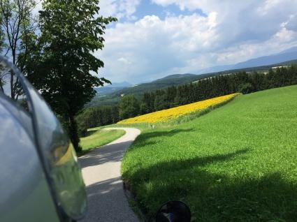 Sommer in der Buckligen Welt