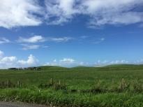 Landschaft bei Campbeltown
