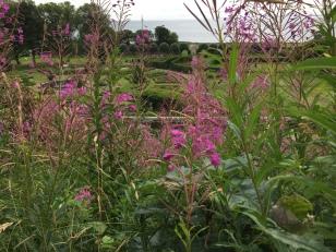 Garten von Dunrobin