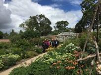Abbotsford Garden