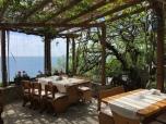 Restaurant Plantomoto