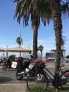 Am Hafen in Alghero