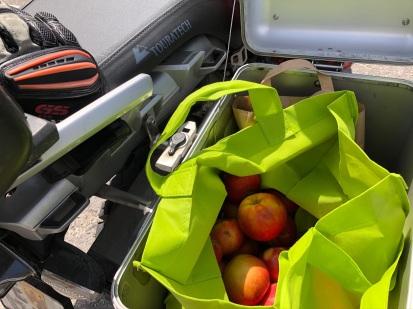 Transportbox mit Äpfel